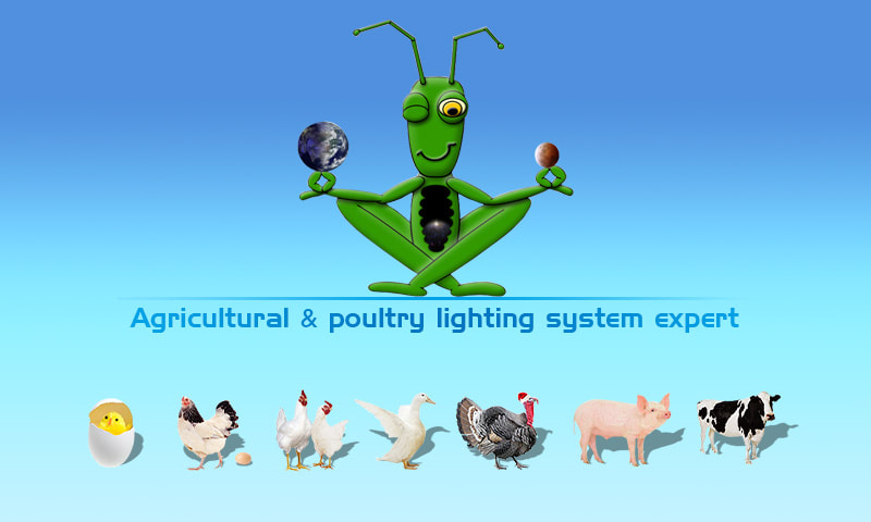 Eco Industrial Supplies is a Agricultural and poultry lighting expert